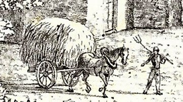 DCC-Cart.jpg